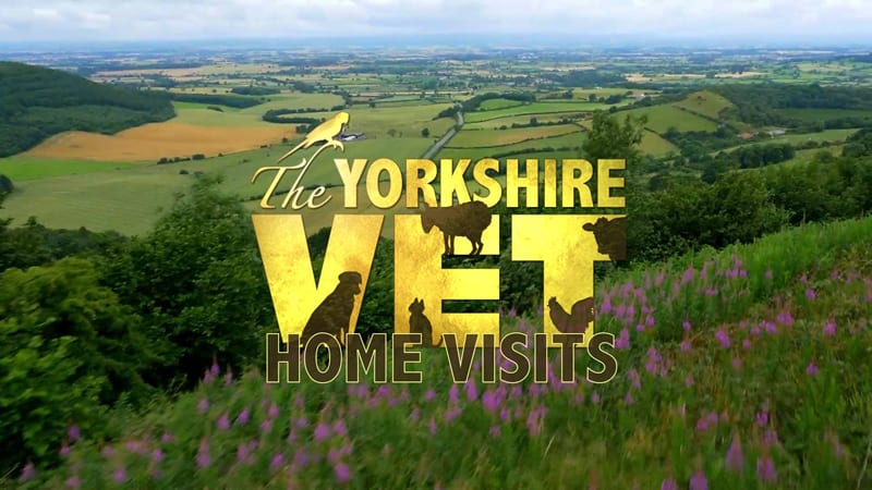 The Yorkshire Vet - Home Visits